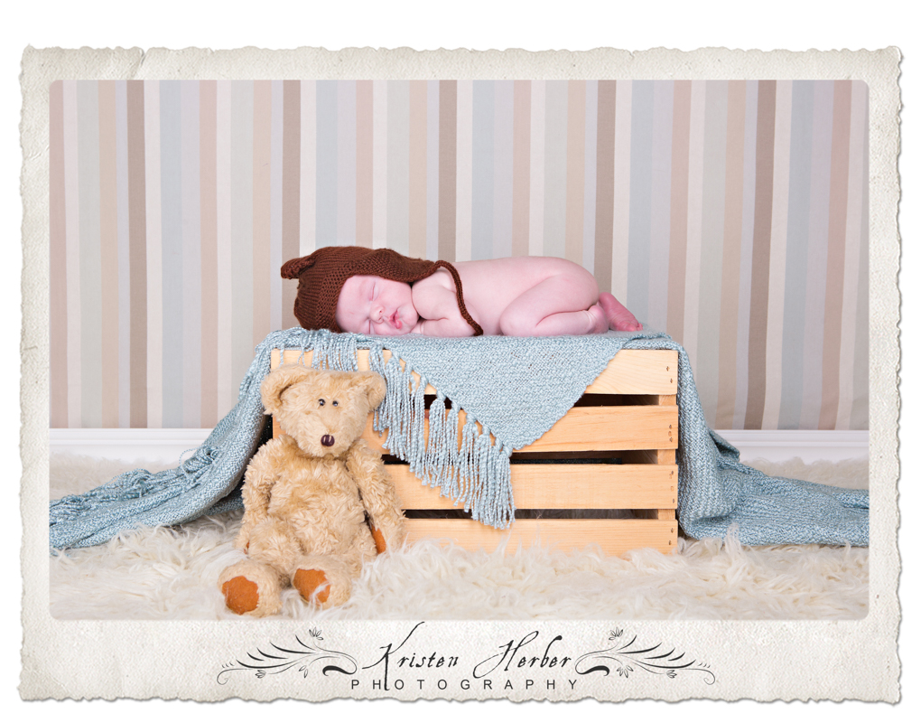 Newborn boy with bears st paul studio