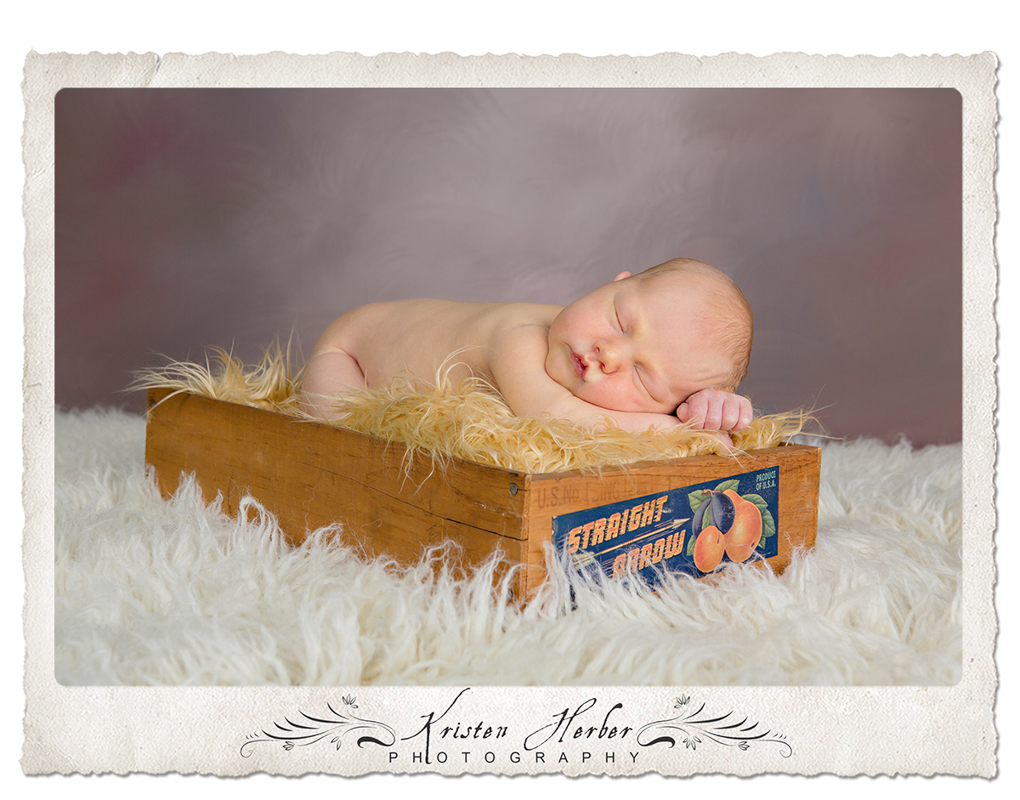 beautiful newborn boy studio photography