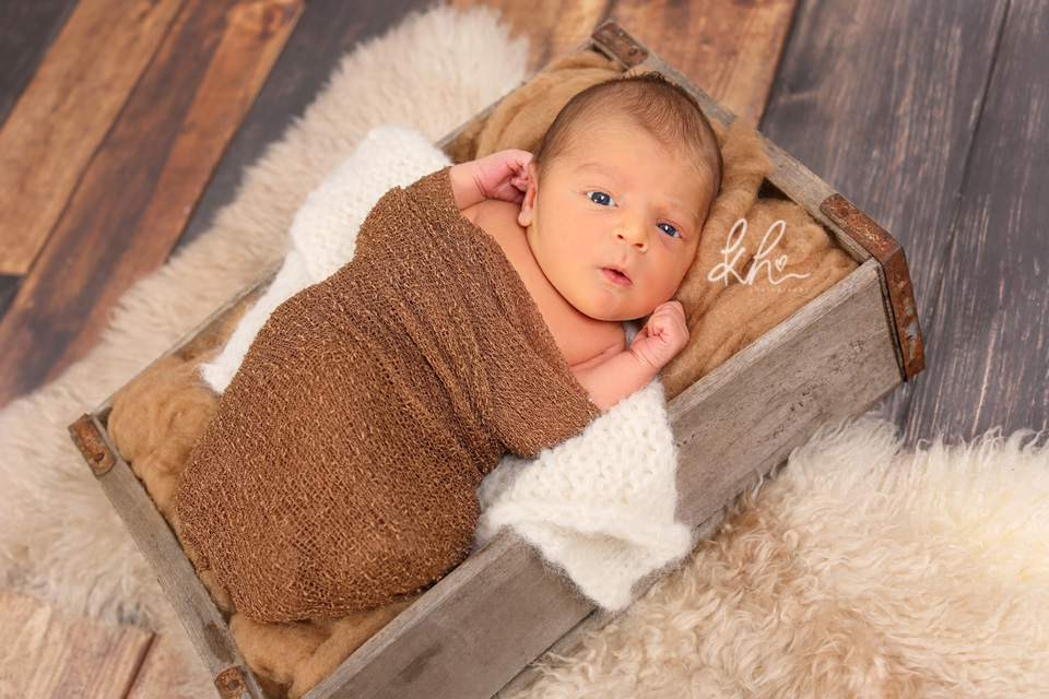 Newborn baby in a brown crate